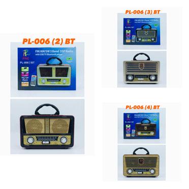 ลำโพงบูลทูธ FM-AM PAE รุ่น PL-006